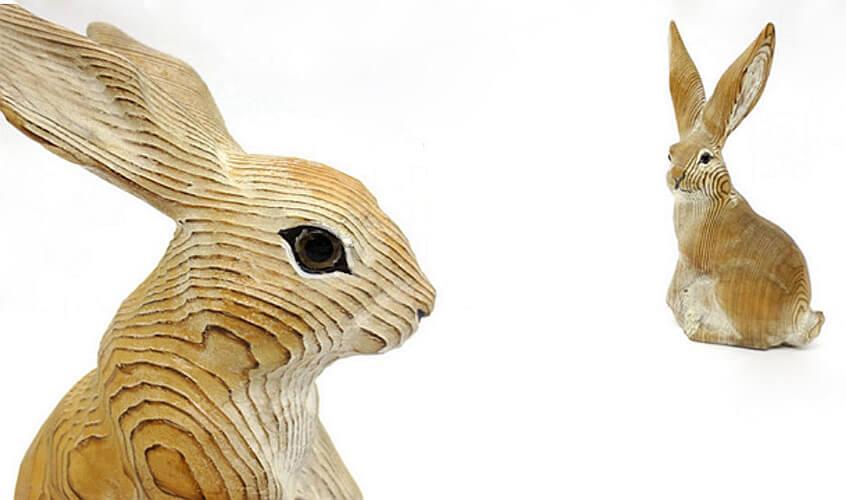 brown rabbits