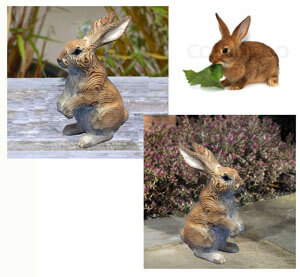 wood brown rabbit