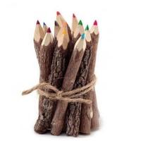 Natural Colored Twig Pencils