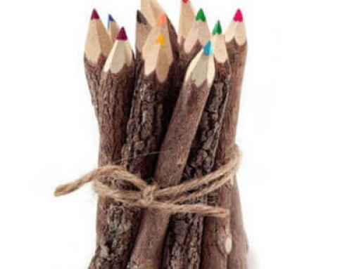 Natural colored twig pencils