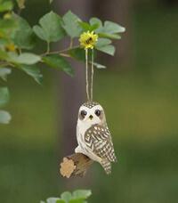 wood owl 1