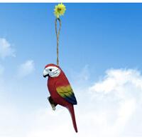 wood parrot 1