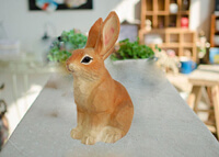 wood rabbit