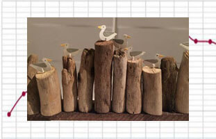 driftwood (1)