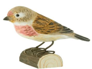 wood Common Linnet
