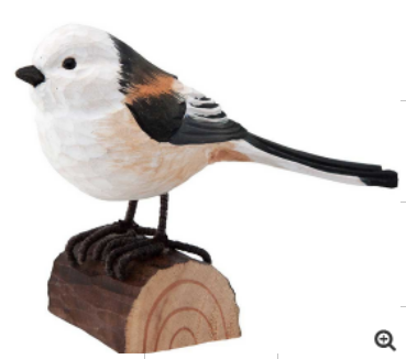 wood Long-tailed tit