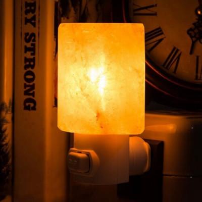 Salt Wall Lamp Plug in